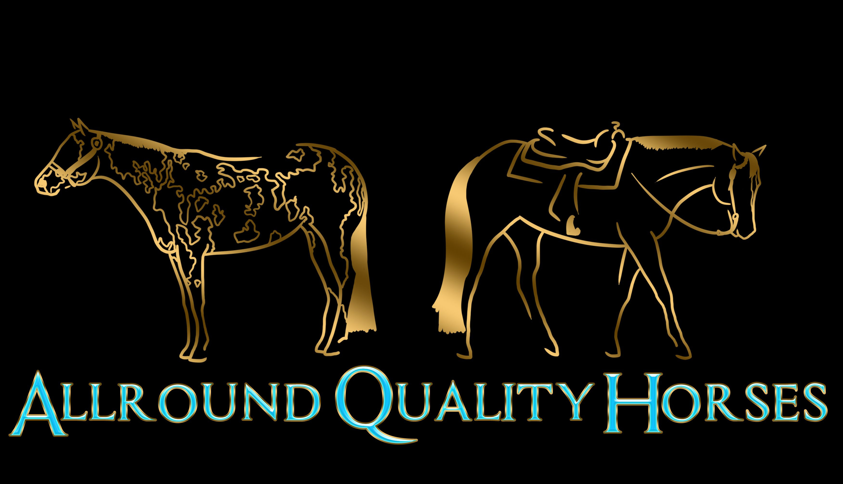 Allround Quality Horses
