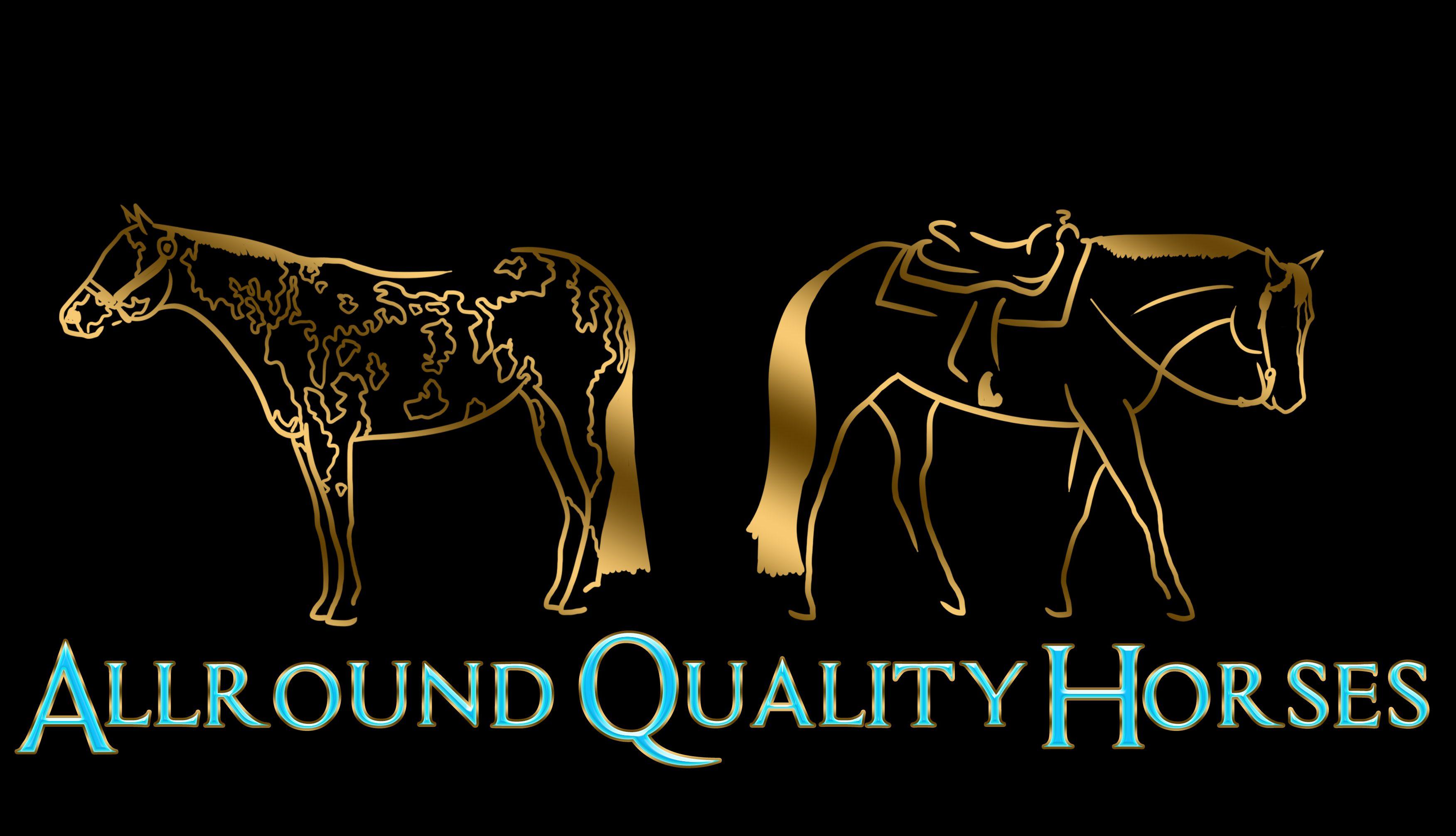 Allround Quality Horses